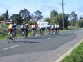 Keeping close in the cross wind as the pack rolls into kyabram for morning tea